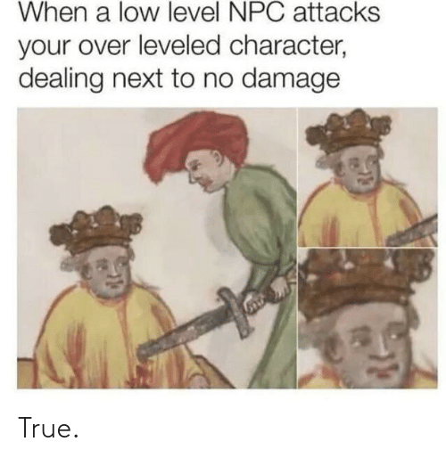 True, Next, and Character: When a low level NPC attacks  your over leveled character,  dealing next to no damage True.
