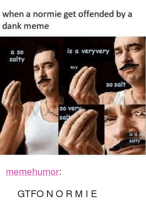 """Dank, Meme, and Being Salty: when a normie get offended by a  dank meme  is a veryvery  a so  salty  ayy  so salt  so ve  sa  sa <p><a href=""""http://memehumor.net/post/166412662186/gtfo-n-o-r-m-i-e"""" class=""""tumblr_blog"""">memehumor</a>:</p>  <blockquote><p>GTFO N O R M I E</p></blockquote>"""