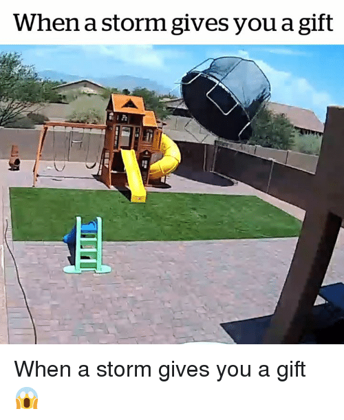 Storm, You, and  Gift: When a storm gives you a gift When a storm gives you a gift 😱
