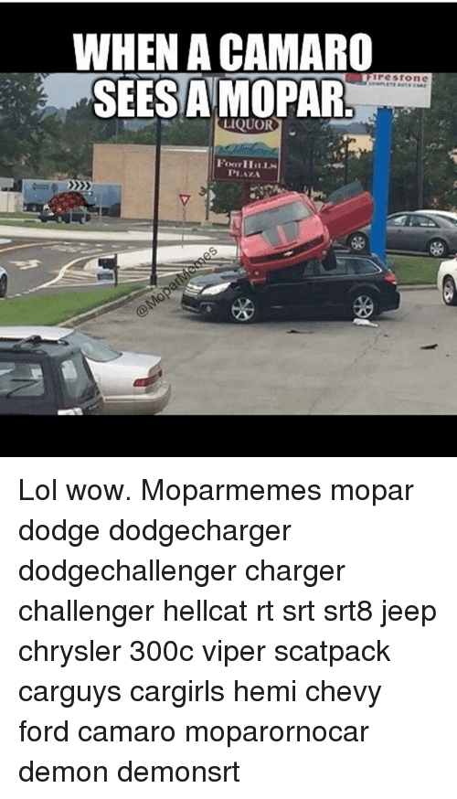 Lol, Memes, and Wow: WHEN ACAMARO  SEESAMOPAR  Ire Stone  LIQUOR Lol wow. Moparmemes mopar dodge dodgecharger dodgechallenger charger challenger hellcat rt srt srt8 jeep chrysler 300c viper scatpack carguys cargirls hemi chevy ford camaro moparornocar demon demonsrt