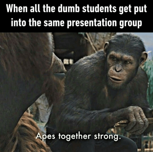 Dumb, Strong, and All The: When all the dumb students get put  into the same presentation group  Apes together strong.