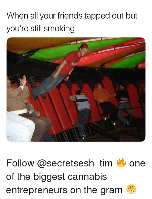 Friends, Smoking, and Weed: When all your friends tapped out but  you're still smoking Follow @secretsesh_tim 🔥 one of the biggest cannabis entrepreneurs on the gram 😤