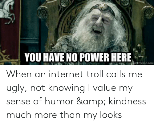 internet troll: When an internet troll calls me ugly, not knowing I value my sense of humor & kindness much more than my looks
