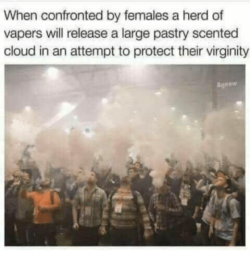 Cloud, Virginity, and Will: When confronted by females a herd of  vapers will release a large pastry scented  cloud in an attempt to protect their virginity  Agnew