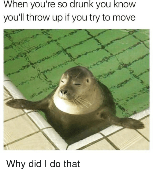 Drunk, Funny, and Throw Up: When  drunk  know  you're so you  youll throw up if you try to move Why did I do that