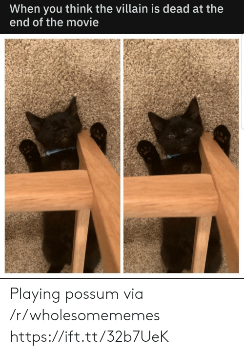Is Dead: When  end of the movie  think the villain is dead at the  you Playing possum via /r/wholesomememes https://ift.tt/32b7UeK