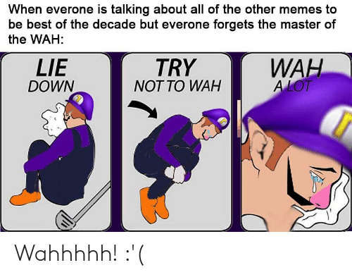 Memes, Reddit, and Best: When everone is talking about all of the other memes to  be best of the decade but everone forgets the master of  the WAH:  WAH  A LOT  LIE  DOWN  TRY  NOT TO WAH Wahhhhh! :'(