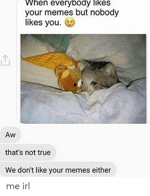 Memes, True, and Irl: When everybody likes  your memes but nobody  likes you.  Aw  that's not true  We don't like your memes either me irl