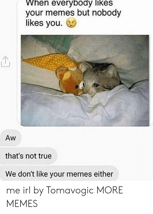 Dank, Memes, and Target: When everybody likes  your memes but nobody  likes you.  Aw  that's not true  We don't like your memes either me irl by Tomavogic MORE MEMES