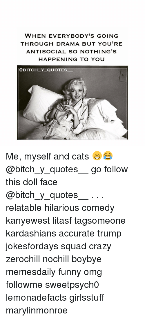 Everybody Go: WHEN EVERYBODY'S GOING  THROUGH DRAMA BUT YOU'RE  ANTISOCIAL SO NOTHING IS  HAPPENING TO YOU  OBITCH Y QUOTES. Me, myself and cats 😁😂 @bitch_y_quotes__ go follow this doll face @bitch_y_quotes__ . . . relatable hilarious comedy kanyewest litasf tagsomeone kardashians accurate trump jokesfordays squad crazy zerochill nochill boybye memesdaily funny omg followme sweetpsych0 lemonadefacts girlsstuff marylinmonroe