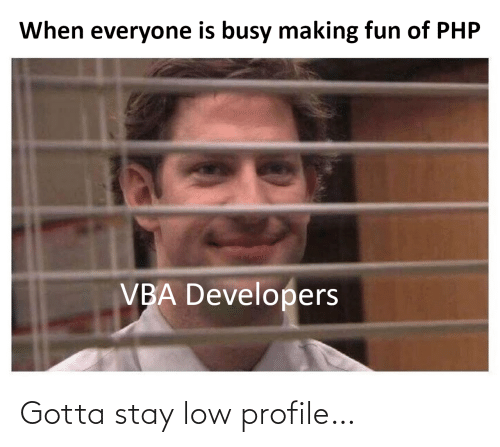 php: When everyone is busy making fun of PHP  VBA Developers Gotta stay low profile…