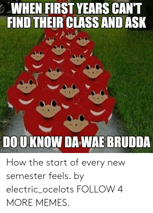 Dou: WHEN FIRST YEARS CAN'T  FIND THEIR CLASS AND ASK  DOU KNOW DA WAE BRUDDA  imgflip.com How the start of every new semester feels. by electric_ocelots FOLLOW 4 MORE MEMES.