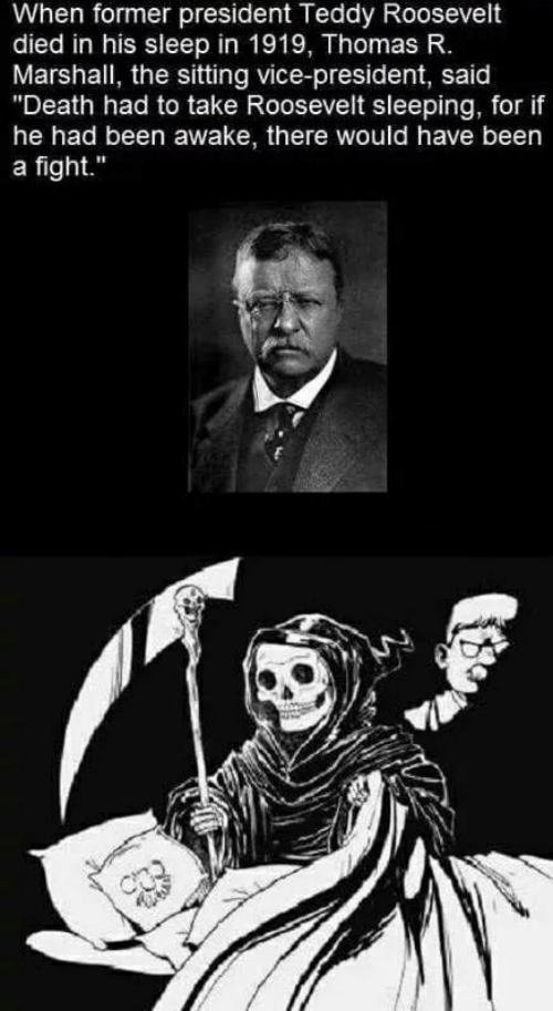 """Teddy: When former president Teddy Roosevelt  died in his sleep in 1919, Thomas R.  Marshall, the sitting vice-president, said  """"Death had to take Roosevelt sleeping, for if  he had been awake, there would have been  a fight."""""""