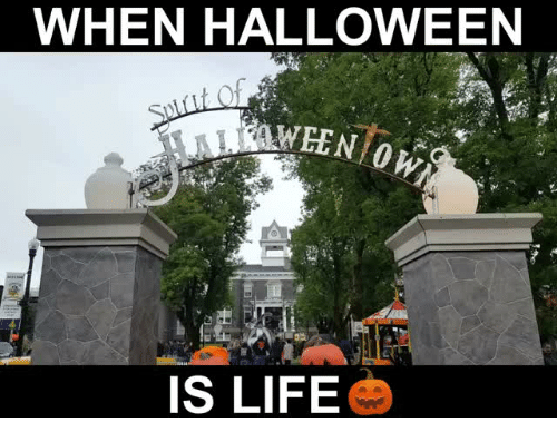 Halloween, Life, and When: WHEN HALLOWEEN  IS LIFE