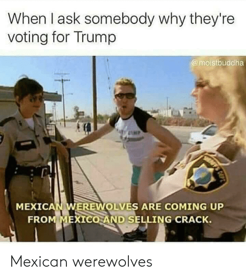 Reddit, Mexico, and Trump: When I ask somebody why they're  voting for Trump  @moistbuddha  MP  FF'S  MEXICAN WEREWOLVES ARE COMING UP  FROM MEXICO AND SELLING CRACK. Mexican werewolves