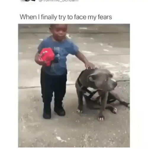 Memes, 🤖, and Face: When I finally try to face my fears