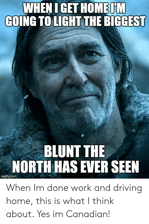WHEN I GET HOME M GOING TO LIGHT THE BIGGEST BLUNT THE NORTH HAS