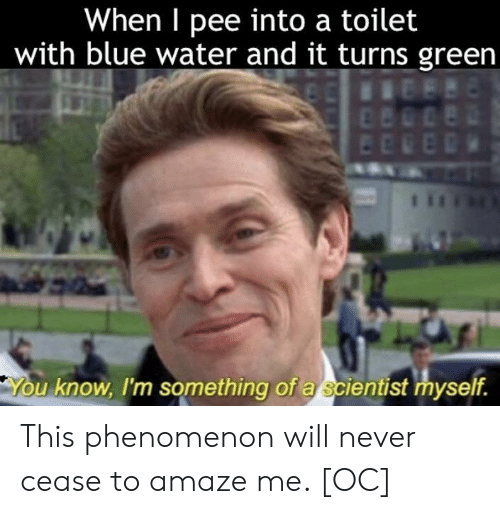 Phenomenon: When I pee into a toilet  with blue water and it turns green  u know, I'm something of a scientist myself. This phenomenon will never cease to amaze me. [OC]