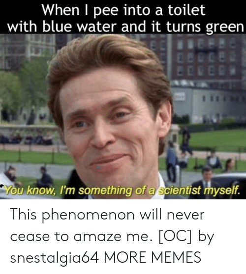 Phenomenon: When I pee into a toilet  with blue water and it turns green  u know, I'm something of a scientist myself. This phenomenon will never cease to amaze me. [OC] by snestalgia64 MORE MEMES