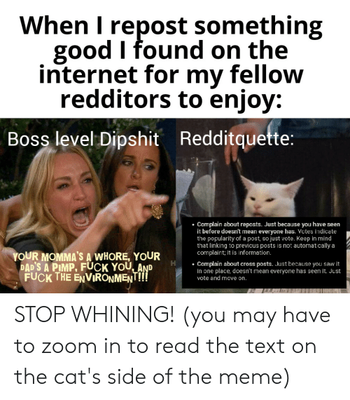 Cats, Fuck You, and Internet: When I repost something  good I found on the  internet for my fellow  redditors to enjoy:  Boss level Dipshit Redditquette:  Complain about reposts. Just because you have seen  it before doesn't mean everyone has. Votes indicate  the popularity of a post, so just vote. Keep in mind  that linking to previcus posts is not automatically a  complaint; it is information.  YOUR MOMMA'S A WHORE, YOUR  DAD'S A PIMP, FUCK YOU AND  FUCK THE ENVIRONMENT!!  Complain about cross posts. Just because you saw it  in one place, doesn't mean everyone has seen it. Just  vote and move on. STOP WHINING! (you may have to zoom in to read the text on the cat's side of the meme)