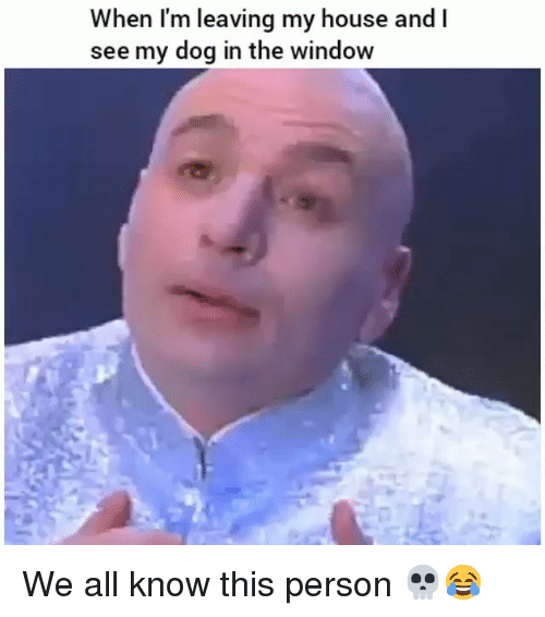 Funny, My House, and House: When I'm leaving my house and l  see my dog in the window We all know this person 💀😂