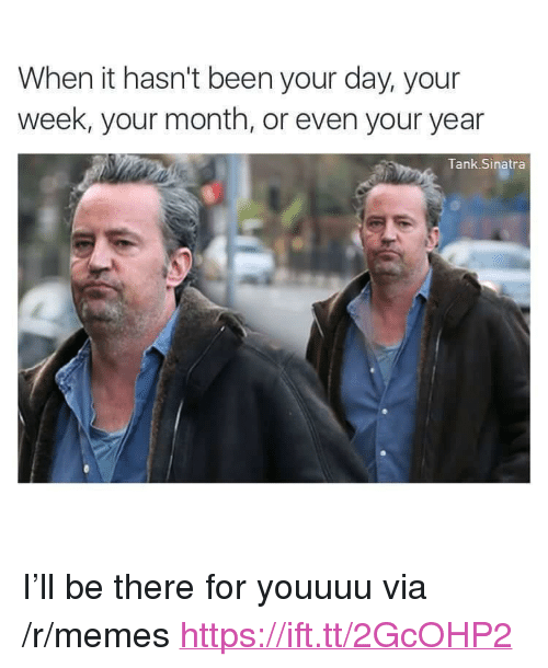 "Memes, Been, and Tank: When it hasn't been your day, your  week, your month, or even your year  Tank Sinatra <p>I'll be there for youuuu via /r/memes <a href=""https://ift.tt/2GcOHP2"">https://ift.tt/2GcOHP2</a></p>"