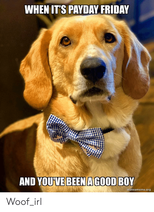 Friday, Irl, and Dog IRL: WHEN IT'S PAYDAY FRIDAY  AND YOUVE BEEN AGOOD BOY  makeameme.org Woof_irl