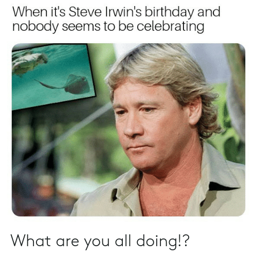 Birthday, All, and Steve: When it's Steve Irwin's birthday and  nobody seems to be celebrating What are you all doing!?
