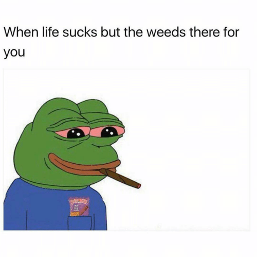 Life Sucking: When life sucks but the weeds there for  you