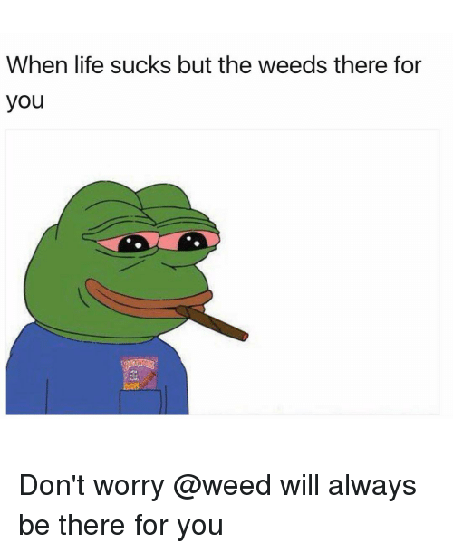 Life Sucking: When life sucks but the weeds there for  you Don't worry @weed will always be there for you