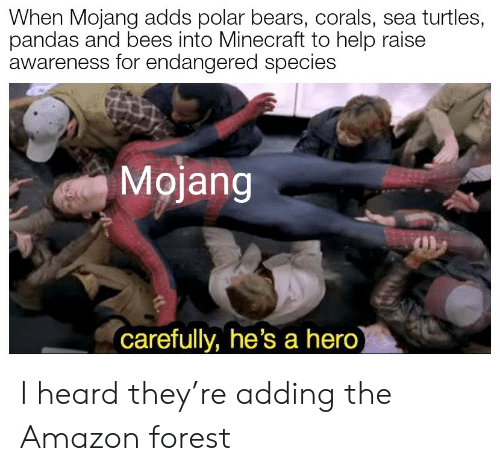 sea turtles: When Mojang adds polar bears, corals, sea turtles,  pandas and bees into Minecraft to help raise  awareness for endangered species  Mojang  carefully, he's a hero) I heard they're adding the Amazon forest
