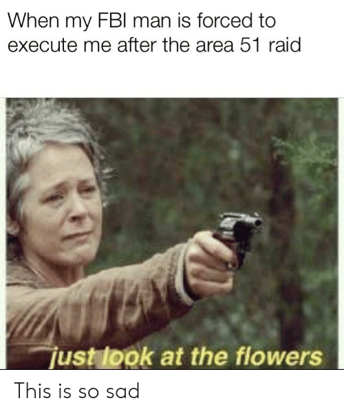 Fbi, Reddit, and Flowers: When my FBI man is forced to  execute me after the area 51 raid  just look at the flowers This is so sad