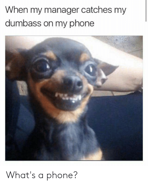 Dank, Phone, and 🤖: When my manager catches my  dumbass on my phone What's a phone?