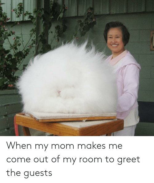 Out Of My Room: When my mom makes me come out of my room to greet the guests