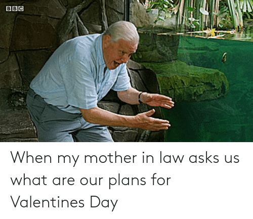 Valentine's Day: When my mother in law asks us what are our plans for Valentines Day