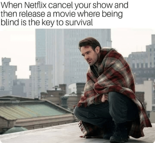 the key: When Netflix cancel your show and  then release a movie where being  blind is the key to survival