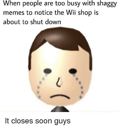 Memes, Soon..., and Wii: When people are too busy with shaggy  memes to notice the Wii shop is  about to shut down It closes soon guys