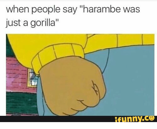 """Harambism: when people say """"harambe was  just a gorilla""""  funny."""