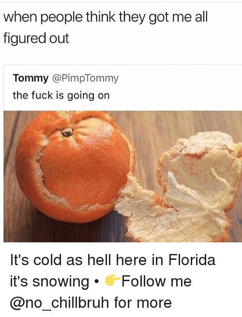 25 Best Memes About Cold As Hell Cold As Hell Memes