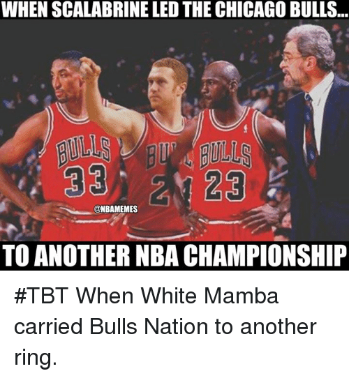 nba championships: WHEN SCALABRINE LED THE CHICAGO BULLS  33 23  @NBAMEMES  TO ANOTHER NBA CHAMPIONSHIP #TBT When White Mamba carried Bulls Nation to another ring.