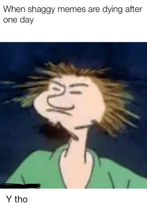 When Shaggy Memes Are Dying After One Day   Meme on ...