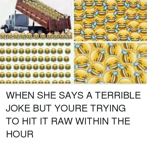 terrible joke: WHEN SHE SAYS A TERRIBLE JOKE BUT YOURE TRYING TO HIT IT RAW WITHIN THE HOUR