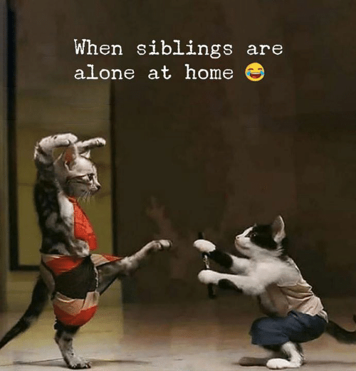 Being Alone, Home, and When: When siblings are  alone at home