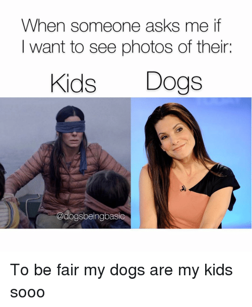 Dogs, Memes, and Kids: When someone asks me if  I want to see photos of their:  Kids Dogs  @dogsbeingbasic To be fair my dogs are my kids sooo