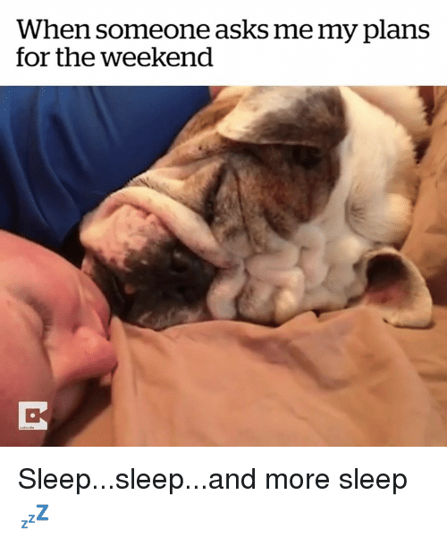 The Weekend, Sleep, and Asks: When someone asks me my plans  for the weekend Sleep...sleep...and more sleep 💤