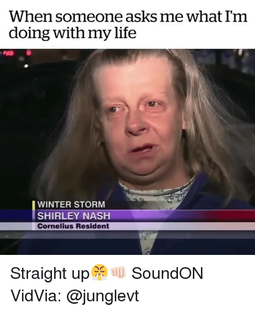 Funny, Life, and Winter: When someone asks me what Im  doing with my life  WINTER STORM  SHIRLEY NASH  Cornelius Resident Straight up😤👊🏻 SoundON VidVia: @junglevt