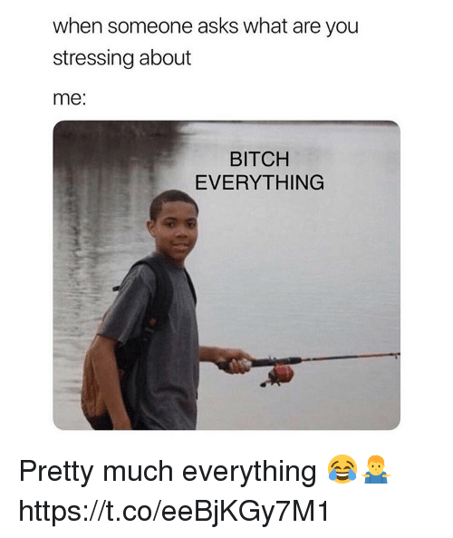 Bitch, Asks, and You: when someone asks what are you  stressing about  me:  BITCH  EVERYTHING Pretty much everything 😂🤷♂️ https://t.co/eeBjKGy7M1