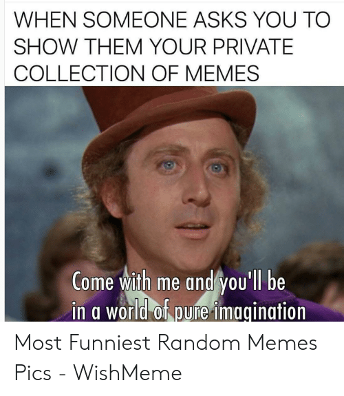 Wishmeme: WHEN SOMEONE ASKS YOU TO  SHOW THEM YOUR PRIVATE  COLLECTION OF MEMES  Come with me and you'll be  in g world of pure imgaination Most Funniest Random Memes Pics - WishMeme