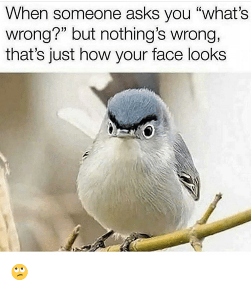 """Funny, Asks, and How: When someone asks you """"what's  wrong?"""" but nothing's wrong,  that's just how your face looks 🙄"""