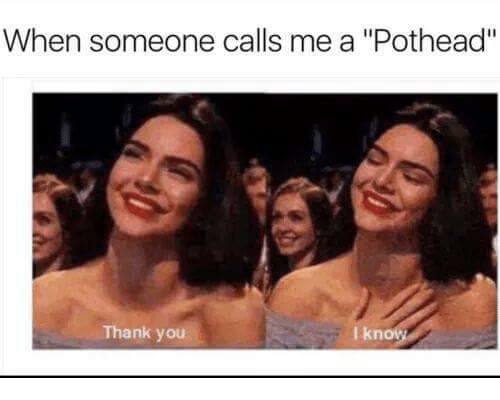 """Thank You, You, and I Know: When someone calls me a """"Pothead""""  I know  Thank you"""